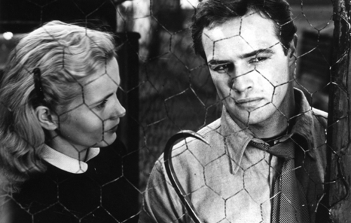 Eva Marie Saint and Brando, gorgeously framed by cinematographer Boris Kaufman.
